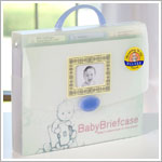 Baby Briefcase - Baby's Paperwork in One Place!