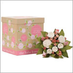 The Baby Bunch Girls Blush Organic Bunch