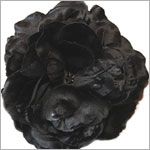 Z: Black Large Rose Bloom