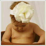 Z: Cream Rose Headband