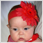 Z: Red Daisy Headband