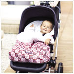 Z: Petunia Pickle Bottom *Glazed* Stroller Bunting Bag - Travel Through Tivoli