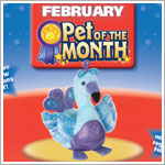 II: Ganz Webkinz Blufadoodle *FEBRUARY Pet of the Month!*