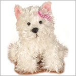 II: Ganz Webkinz White Terrier Dog