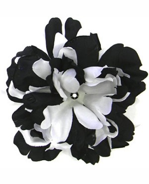 Z: Black/White Peony Bloom