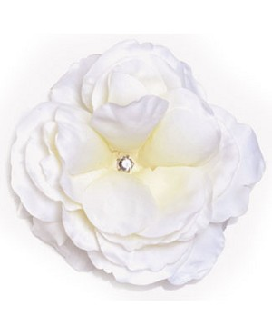 Z: White Large Rose Bloom