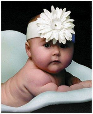 Z: White Daisy Headband