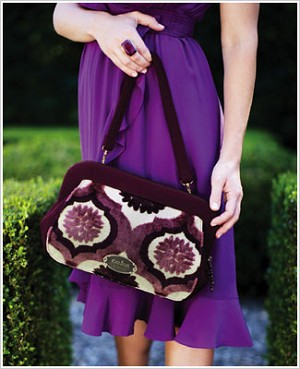 Z: Petunia Pickle Bottom CAKE Cameo Clutch - Plum Tart