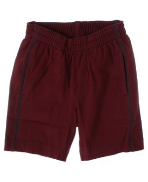 S (6m-12m) II: Tea Boysenberry Long Shorts